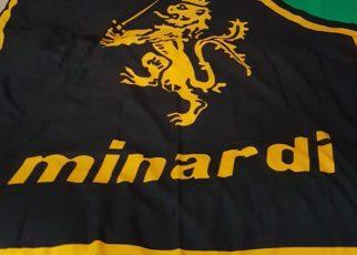 Forza Minardi